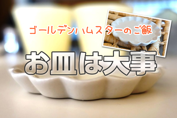 moco-food-001