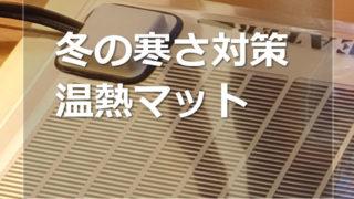 爬虫類用の温熱マットを使う