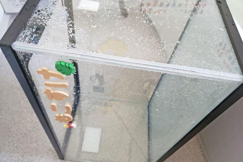 ハムスター用水槽の水洗い方法
